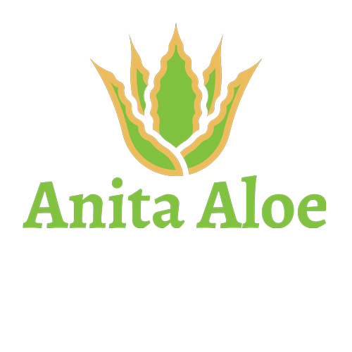 Anita Aloe Logo Design 1 - Website Design and Build Health and Wellbeing Products